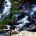 Lundy Falls 84-3