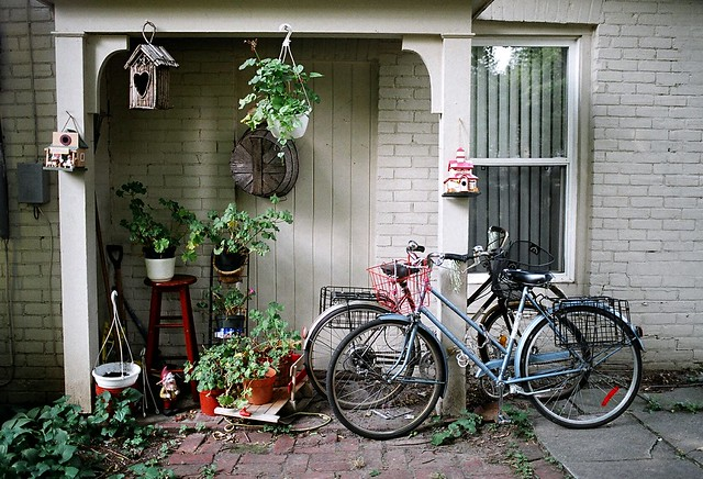 Bicycles and Birdhouses