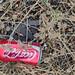 Coca -cola