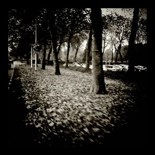Autumn 2011 by Sergii Denega
