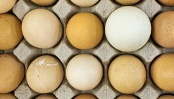 Eggs at Vietnamese Market