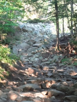 Rocky Road of the Tuckerman Ravine Trail