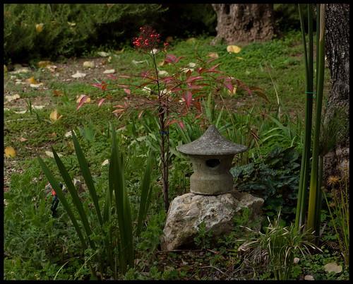 Zen in Ein Kerem