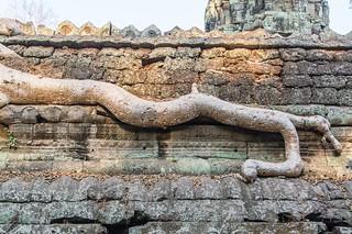 angkor - cambodge 2016 98
