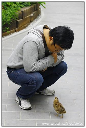 [旅遊.台北]花博新生園區-未來館~鳳梨也是花 @VIVIYU小世界