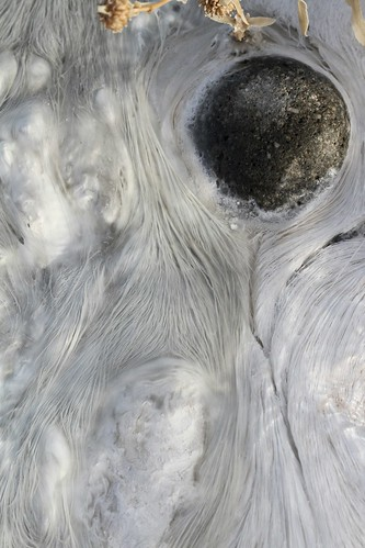 Filamentous bacteria in a new hot spring