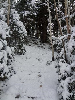 Garfield Trail Head