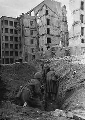 Caminando entre las trincheras (Stalingrado, 1942)