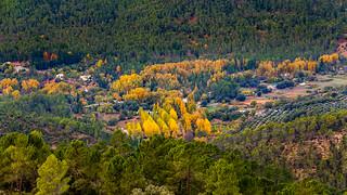 Zona de picifactoria en Sierra de Cazorla