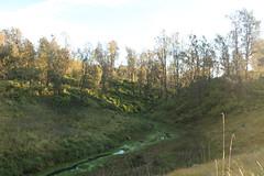 "Pendakian Sakuntala Gunung Argopuro Juni 2014 • <a style=""font-size:0.8em;"" href=""http://www.flickr.com/photos/24767572@N00/27092895651/"" target=""_blank"">View on Flickr</a>"