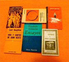 Adonais y otros poemas de P.B. Shelley - Ensay...