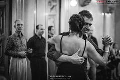 TangoAmadeus Tango Festival 2016