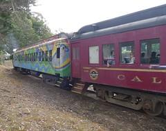 Skunk Train 120630_12