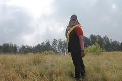 "Pendakian Sakuntala Gunung Argopuro Juni 2014 • <a style=""font-size:0.8em;"" href=""http://www.flickr.com/photos/24767572@N00/27161939595/"" target=""_blank"">View on Flickr</a>"