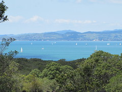 Auckland harbour from Rangitoto