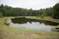 """Pond behind the old farm house • <a style=""""font-size:0.8em;"""" href=""""http://www.flickr.com/photos/54494252@N00/7785189780/"""" target=""""_blank"""">View on Flickr</a>"""