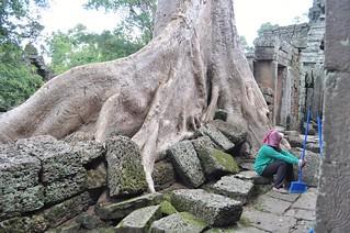 angkor - cambodge 2014 34