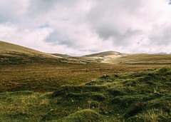 I've decided my favorite landscape is the Páramo, Andean plains above the treeline. I think I've passed through my last one for this walk. #theworldwalk #travel #ecuador