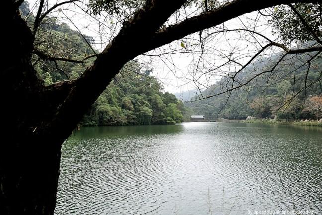 後慈湖 (48)