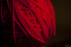 Red Yarn | 331/365 (EXPLORED)