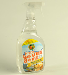 Everyday Stain and Odor Remover