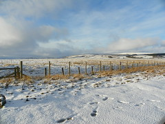 Weardale: December 5th