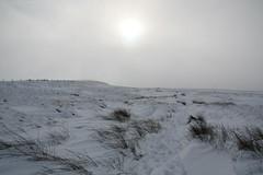 Saddleworth Moor in the Snow