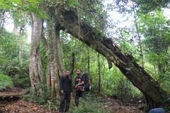 "Pendakian Sakuntala Gunung Argopuro Juni 2014 • <a style=""font-size:0.8em;"" href=""http://www.flickr.com/photos/24767572@N00/27162144325/"" target=""_blank"">View on Flickr</a>"
