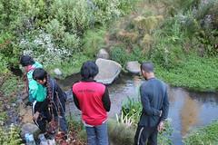 "Pendakian Sakuntala Gunung Argopuro Juni 2014 • <a style=""font-size:0.8em;"" href=""http://www.flickr.com/photos/24767572@N00/27066269272/"" target=""_blank"">View on Flickr</a>"