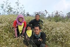 "Pendakian Sakuntala Gunung Argopuro Juni 2014 • <a style=""font-size:0.8em;"" href=""http://www.flickr.com/photos/24767572@N00/26887503500/"" target=""_blank"">View on Flickr</a>"