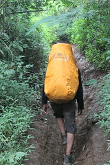 "Pendakian Sakuntala Gunung Argopuro Juni 2014 • <a style=""font-size:0.8em;"" href=""http://www.flickr.com/photos/24767572@N00/27162202835/"" target=""_blank"">View on Flickr</a>"