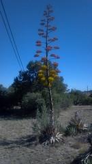 New Mexico :-)