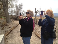 smartphone cameras on refuge