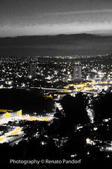 Golden Neon City