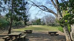 熊野神社市民の森(天神平広場)(Tenjindaira Square, Kumano Shrine Community Woods)