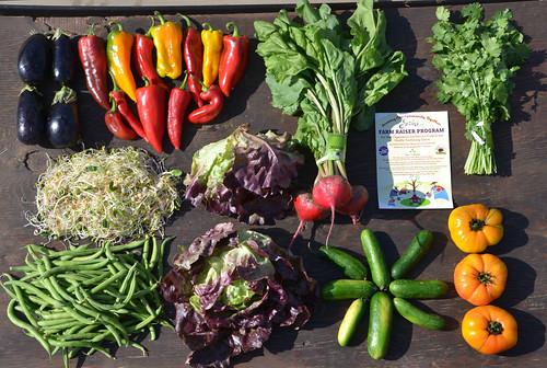 Good Farm Box, August 6 - 12