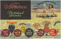 Norma Tropical Drinks