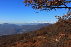 Monte Rosa im Blick