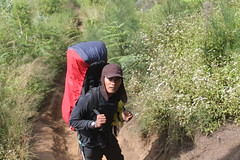"Pendakian Sakuntala Gunung Argopuro Juni 2014 • <a style=""font-size:0.8em;"" href=""http://www.flickr.com/photos/24767572@N00/27066894942/"" target=""_blank"">View on Flickr</a>"
