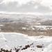 Neve no Parque Natural do Alvão-18