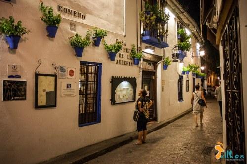 Pátios típicos de Córdoba