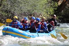 Taylor River, Gunnison, CO