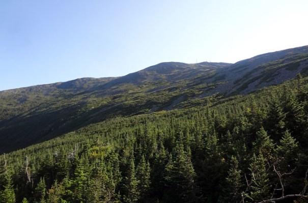 Ammonoosuc Ravine Trail View of Mt. Washington
