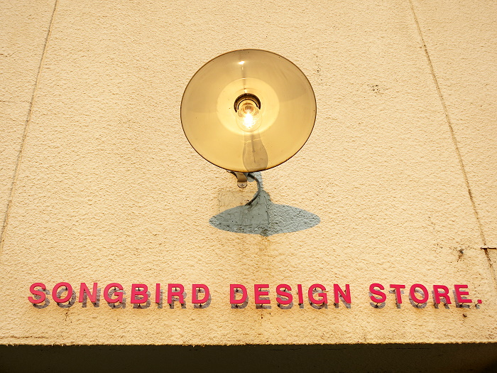 bird19.jpg