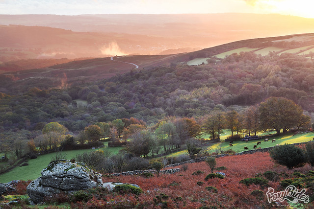 Dawn from Hayne Down