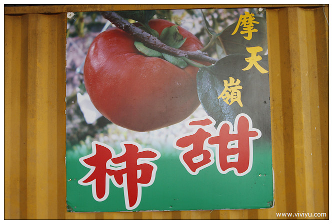 [苗栗.旅遊]芳香森林味蕾小旅行~自製麵包認識食材&農場採果樂 @VIVIYU小世界