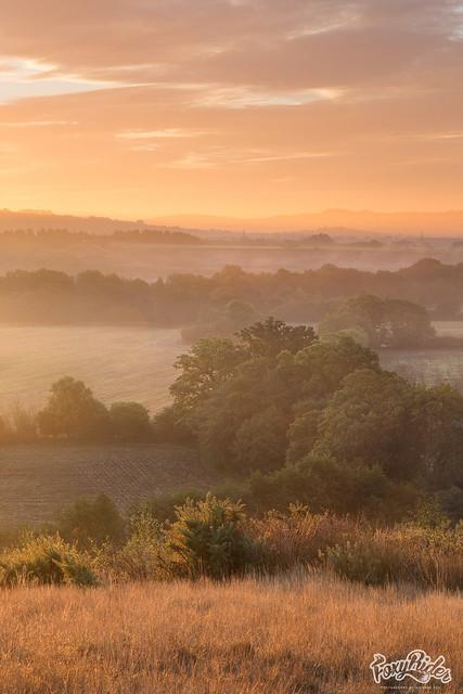 Devon Mists