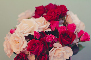 white, red, and pink mini roses