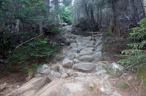 Ammonoosuc Ravine Trail Staircase