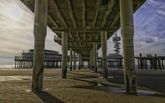 Beneath the Pier...